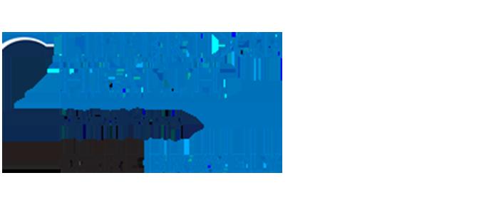 Schub Logo